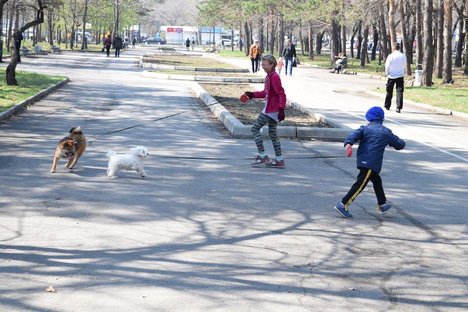 ハバロフスク 公園
