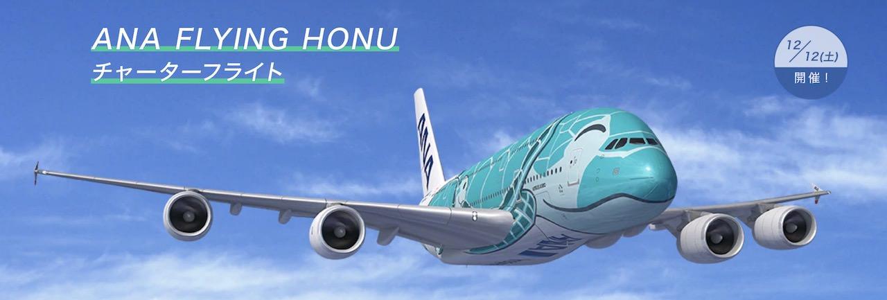 ANA チャーター A380