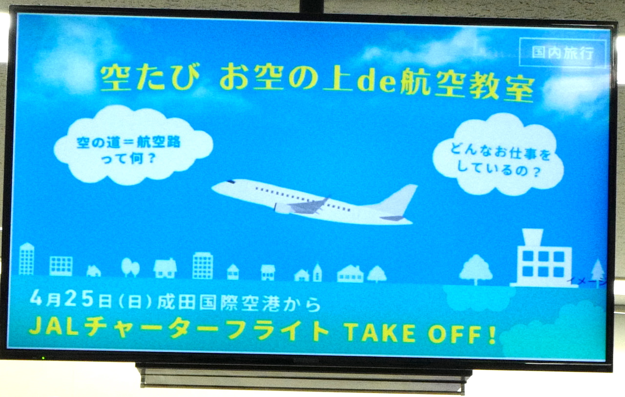 JAL チャーターフライト